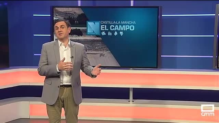 El Campo | El BOE publicará esta semana la ampliación del plazo de la PAC