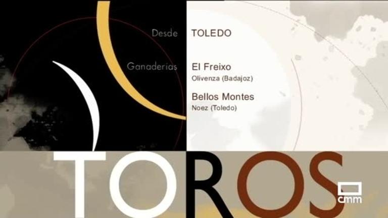 Toros desde Toledo