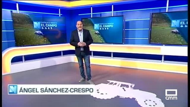 El Campo | Reunión de la comisión de flujos migratorios en Castilla-La Mancha