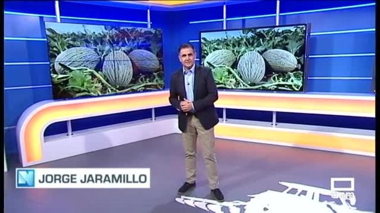 El Campo | El melón de Castilla-La Mancha, listo para dar el salto al mercado