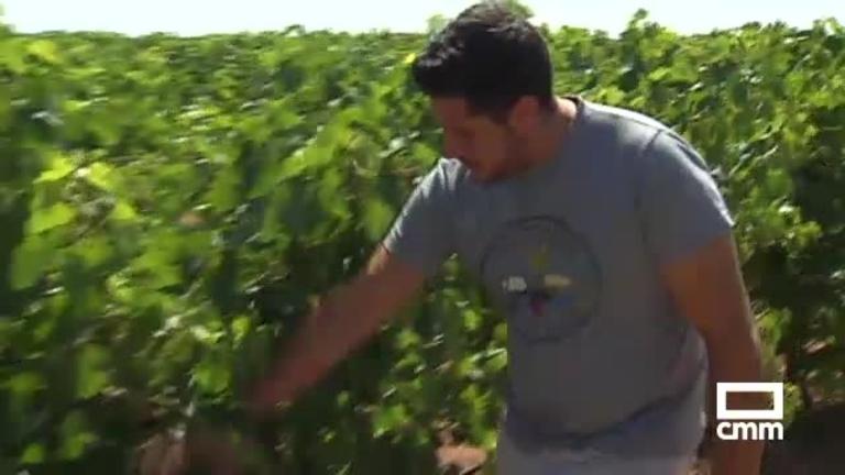 Ayudas para jóvenes agricultores: el plazo de inscripción finaliza el 22 de octubre