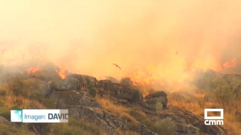 Extinguido el incendio forestal de El Real de San Vicente (Toledo)