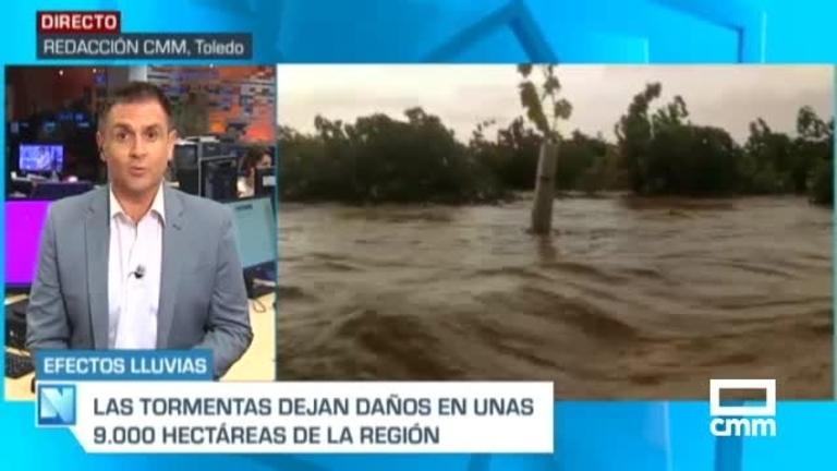 9.000 hectáreas afectadas por el temporal en el campo de Castilla-La Mancha