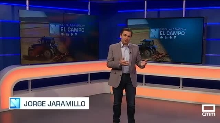 El Campo | Las pequeñas queserías de CLM reclaman financiación para costear el almacenaje