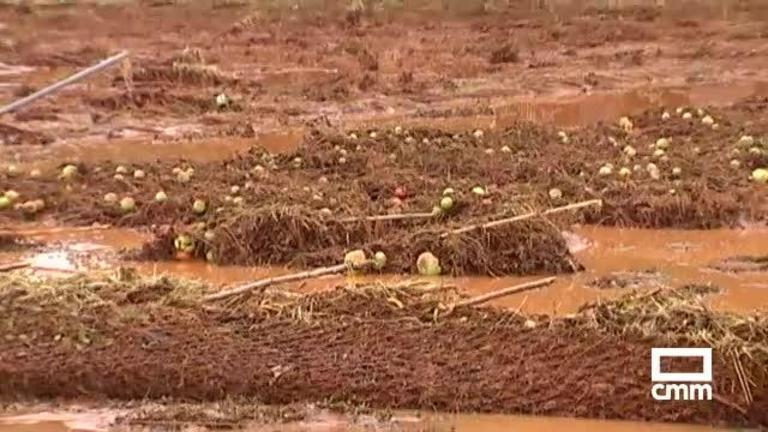 El Picazo (Cuenca) y Ossa de Montiel (Albacete): así se recuperan de las lluvias