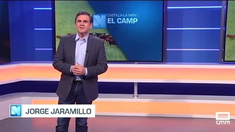 El Campo | Los productores de vacuno reclaman protección frente a las importaciones