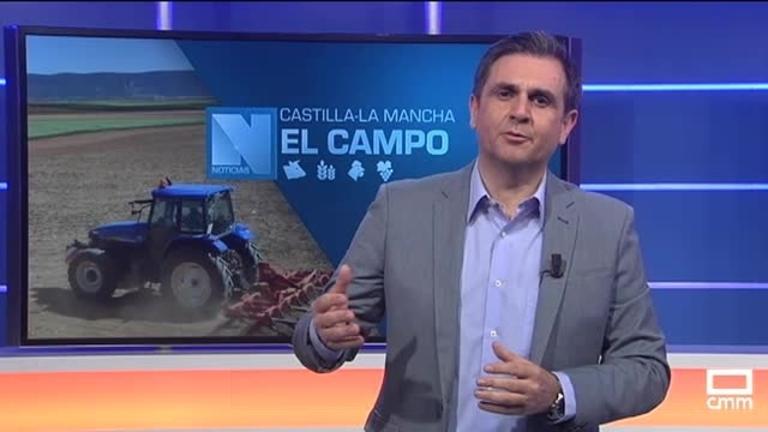 El Campo | Inquietud en el mercado vitivinícola