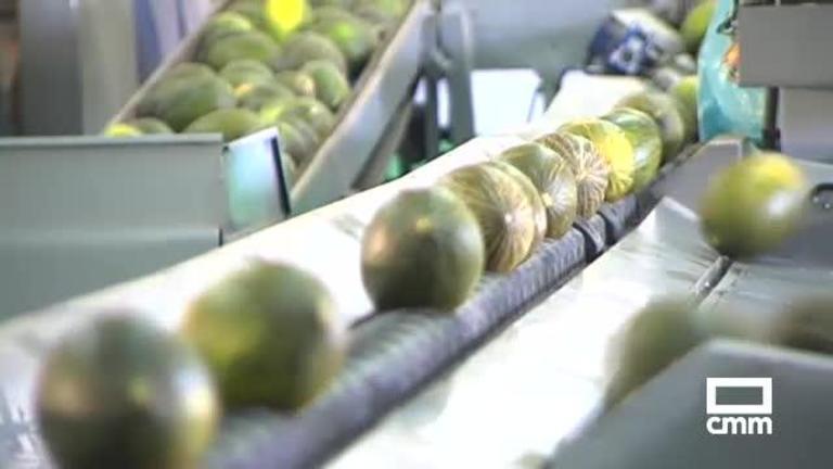 Los precios del melón y la sandía bajan un 70 por ciento