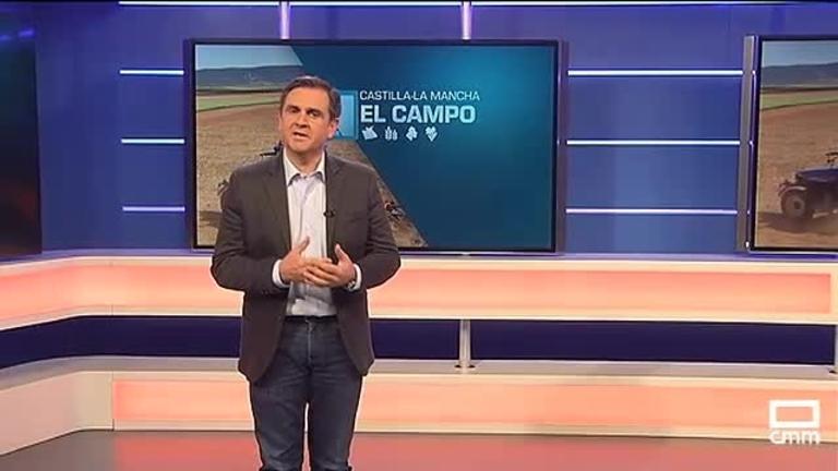 El Campo | Aumenta la venta de aceite de oliva en marzo