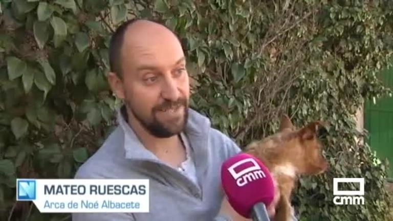 Salvan a un perro vivo abandonado dentro de un contenedor