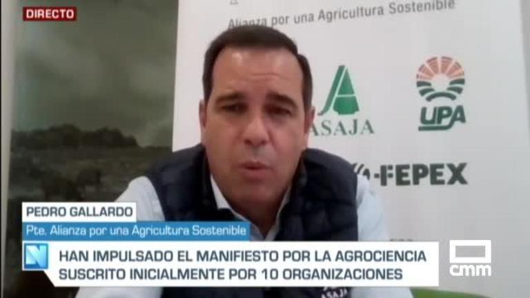 Entrevista a Pedro Gallardo