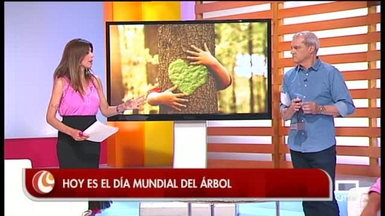 Día Mundial del árbol