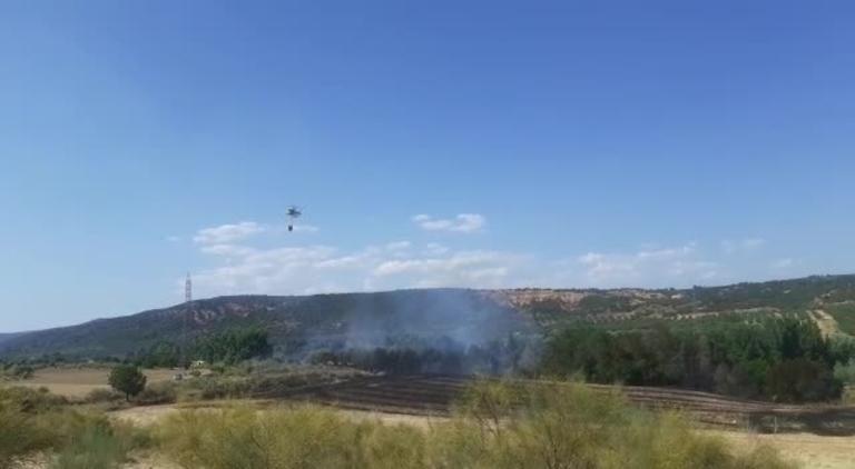 Controlado el incendio agrícola en Humanes (Guadalajara)