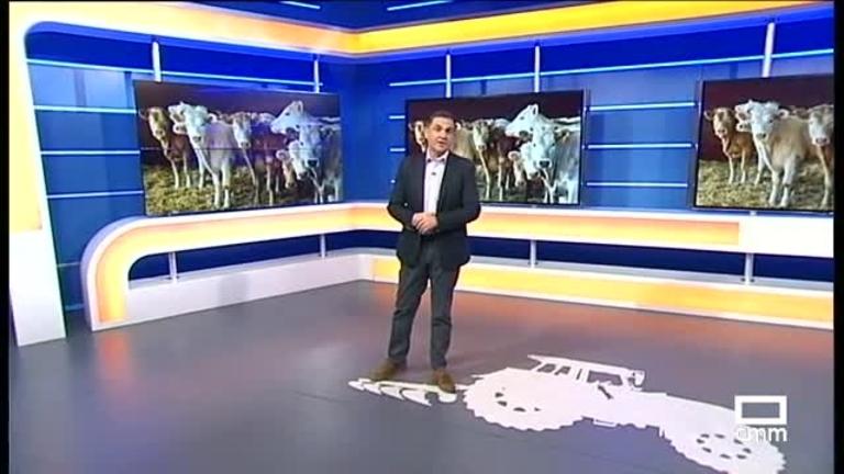 El Campo | El Ministerio de Agricultura reclamará un rescate para el vacuno de carne