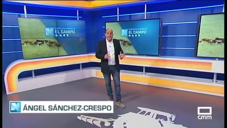 El Campo | Buenos precios para la leche de oveja y bajos para la de vaca |17.8.21