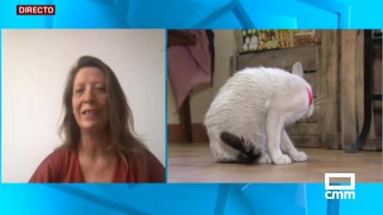 Entrevista a Geraldine Courtois