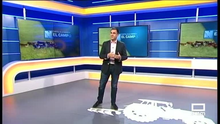 El Campo | Problemas en pagar la aceituna a 30 días