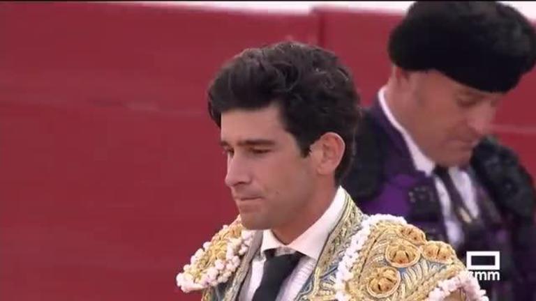 Toros desde Villamayor de Santiago