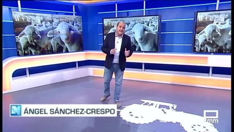 El Campo | Suben  los precios del cordero aunque siguen altos los del pienso | 24.8.21
